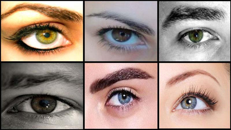 ¿Qué dicen las cejas de tu personalidad?