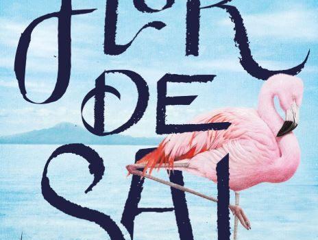 Flor de sal, novela de aventuras